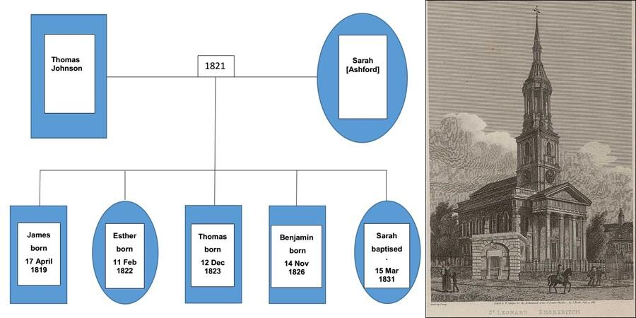 Johnson and Famly Tree #2